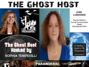 Ghost Host interview